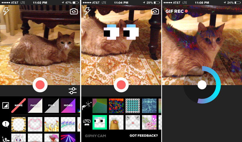 Giphy Cam aims to make your crazy impulses easier to capture图2